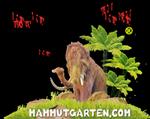 Kohout's Gartencenter - Prietitz